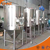 1000L 2000L 5000L Stainless Steel Conical