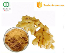 Alibaba assurance GMP OEM factory supply best quality health benefits powdered ginger root, ginger powder