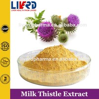 Best Selling and High Quality Silymarin Extract Powder in Stock