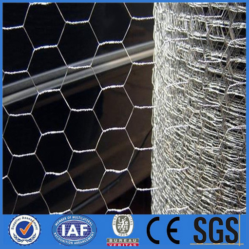 Hexagonal wire mesh chicken stocking manufacturers