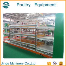 JINGU -CS automatic layer poultry equipment / poultry cage layer chickens / layer poultry farms