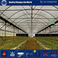 high quality low cost plastic greenhouse with certificate