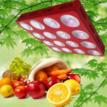 600w 1200w LED Grow Light Full Spectrum Lamp Panel for Hydroponics veg Flower bloom