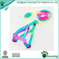 Pet Multicolor Nylon adjustable Harnesses Leads dog Harness and leashes set