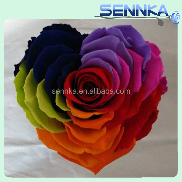 new products rainbow preserved rose singapore flowers price