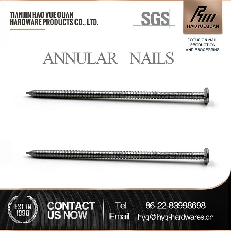 annular nail,stainless steel annular ring nails from factory
