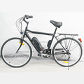 Hot sale electric bike 36V 10AH bike electric