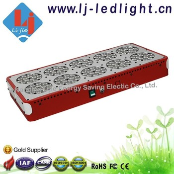 Guangxi lighting Shenzhen factory led lights growing apollo 10 full spectrum and red blue color ratio for hydroponic system