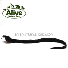 Stretch long snake TPR plastic animals squishy OEM OBM factory promotion squishy animals
