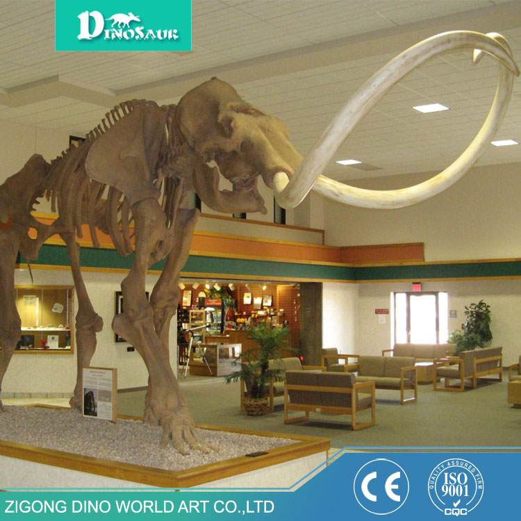 Exhibition Mammoth Fossil Indoor Amusement Park Decoration