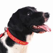 Personalized ID Collars with Pet Name and Phone Number, Embroidered Fabric Polyester Nylon Dog Collar