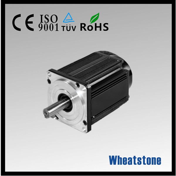 48v 1000w emp brushless hub motor for sight seeing