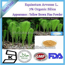 Manufacture supply Herbal Horsetail Extract silicon in bulk