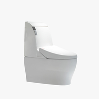 High quality bathroom automatic smart toilet Water Closet Female Intelligent Toilet