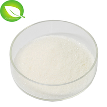 100% Natural High Quality of Fish Oil Powder Omega-3 fatty acid DHA EPA
