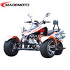 250cc 12' petrol quad bike ,quad three wheel, quad atvs chinese with air shock