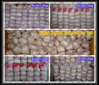 Fresh Style and Organic Cultivation Type Chinese Fresh White Garlic