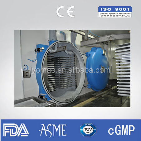 Industrial fruit freeze dryer/Lyophilizer/Freeze Drying Machine