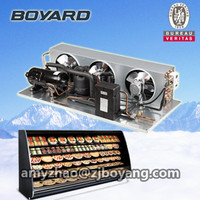 r404a 220V 60Hz air cooled condensing unit with board hermetic rotary cooling compressor for supermarket showcase displayer