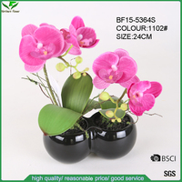 24cm Silk Pink Flower Butterfly Orchids in Double Round Ceramic Pot