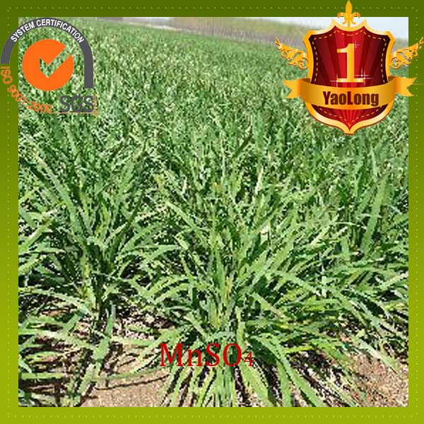what is MnSO4 sulphate base fertilizer agriculture