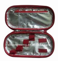 Personal Insulin Medicine carrier