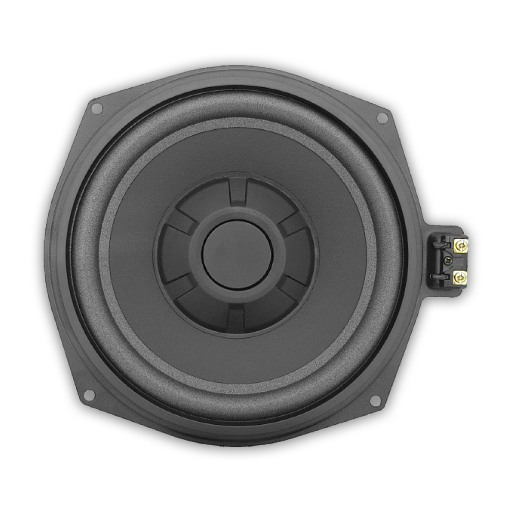 Professional audio system OEM for European car 8 inch subwoofer speakers