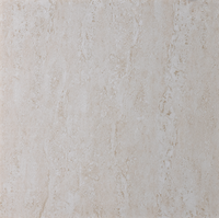 New Design Glazed Floor Rustic Full body Porcelain Tiles with low price60X60(H6062)