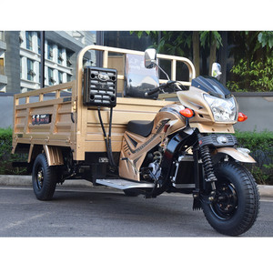 Loncin motorcycle 250cc 3 wheel pertol cargo bike truck cargo tricycle