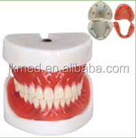 Buy Good Price Dental Composite Teeth/Synthetic Acrylic Denture ...