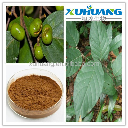 Pygeum Africanum Extract ,Pygeum,phytosterols>2.5%