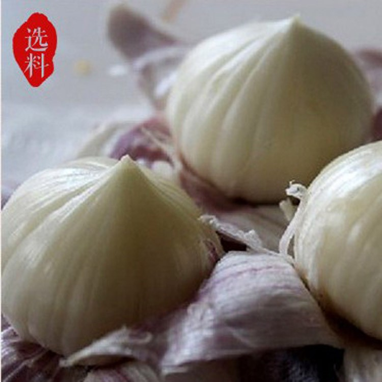 Wholesale fresh white garlic for export