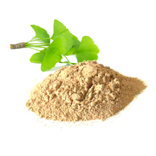 herbal powder chinese medicinal materials ginkgo biloba extract green leaf