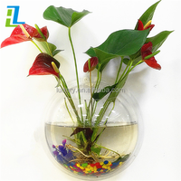 New style high transparent acrylic fish small tank unique fish shaped tank hot sale