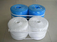 Eco-friendly pp raffia string for packing