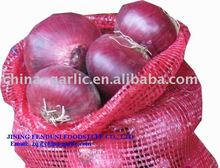 Supply Fresh Red Onion in Cold Warehouse 2012 crop