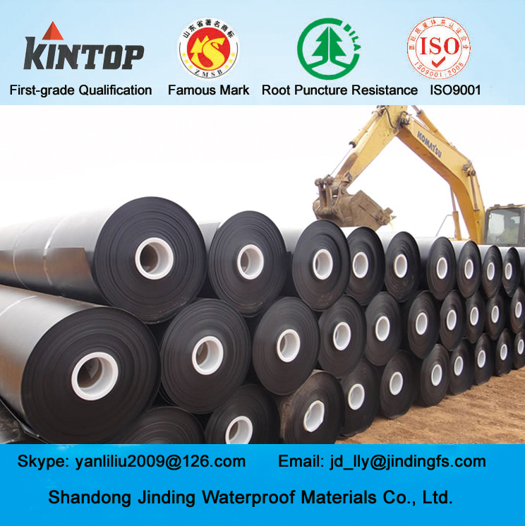 Kintop Pond Liner for Fish and Shrimp Farm Pond HDPE Geomembrane