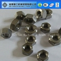 Different Size M5 M6 M8 Titanium Hex Nuts