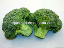 2013 new green giant frozen vegetable