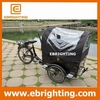 three wheel baby cargo bike icecream
