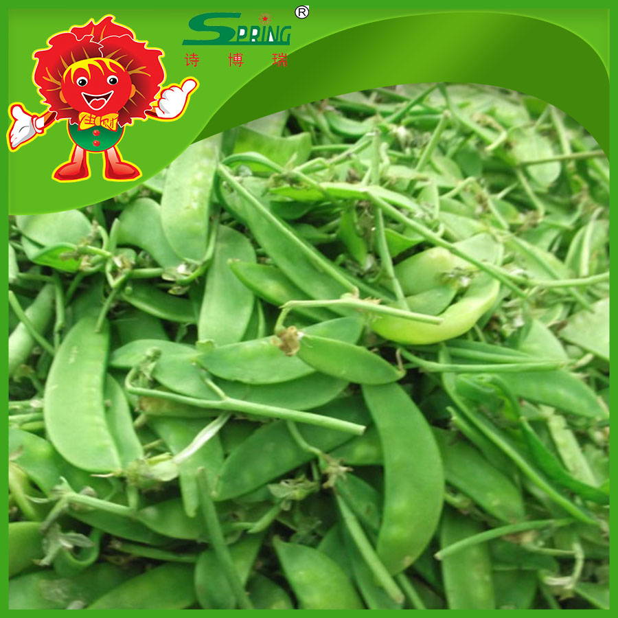 Bulk Frozen Snow Pea Pod for Export