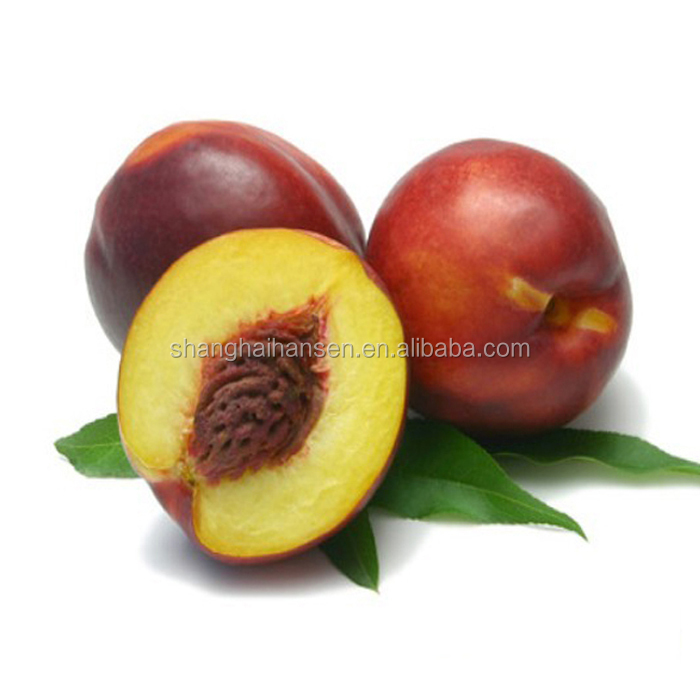 Professional Fresh Fruit import agency service