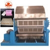 New Ce Automatic Pulp Paper Egg Tray Making Machine/0086-13283896221
