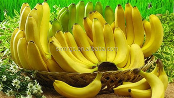banana extract powder