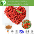 Natural barbary wolfberry fruit spray dried powder polysaccharide 40% 50%