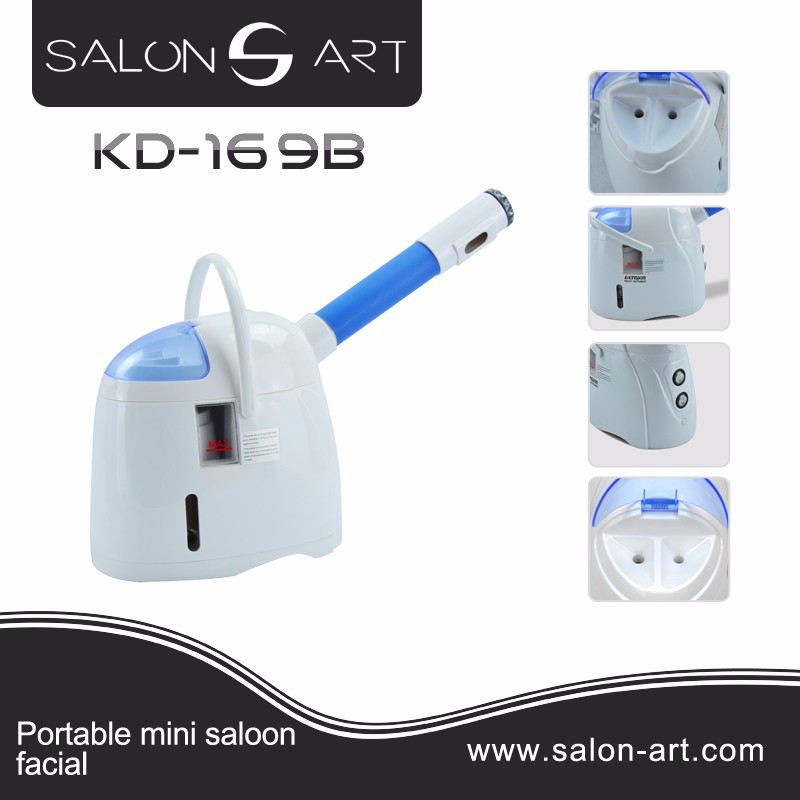 KD-169B Portable home use cold and hot mini facial steamer