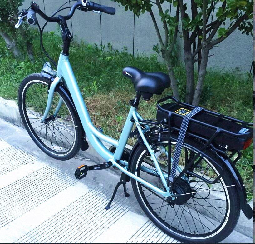 Cheap Electric Bicycle High Quality Electric Bike Price