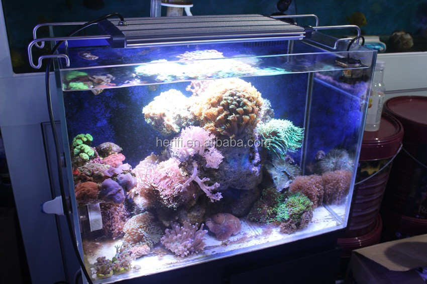 30 inch 48 inch 72 inch led aquarium light customized coral reef