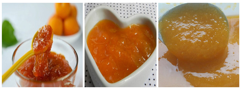 Best Quality Apricot Puree Concentrate
