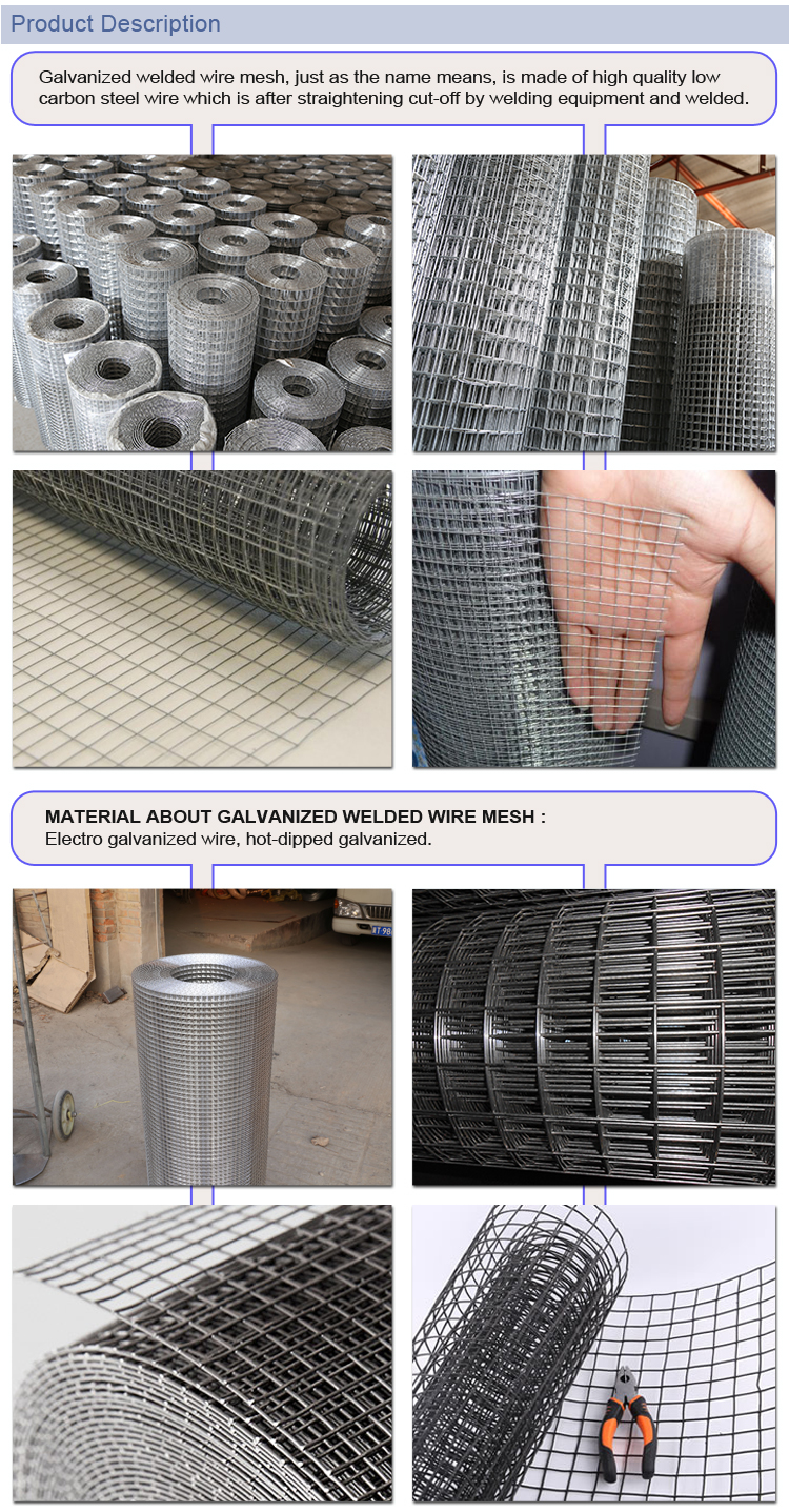 anti-corrosive beautiful form reliable galvanized welded wire mesh manufacturer